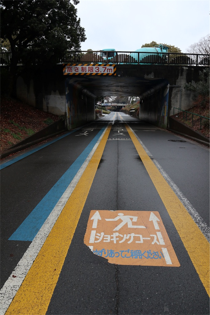 f:id:chizuchizuko:20180202212048j:image