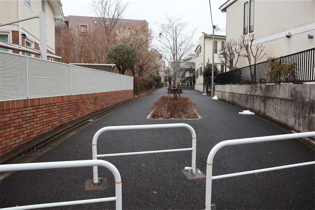 f:id:chizuchizuko:20180202212320j:plain