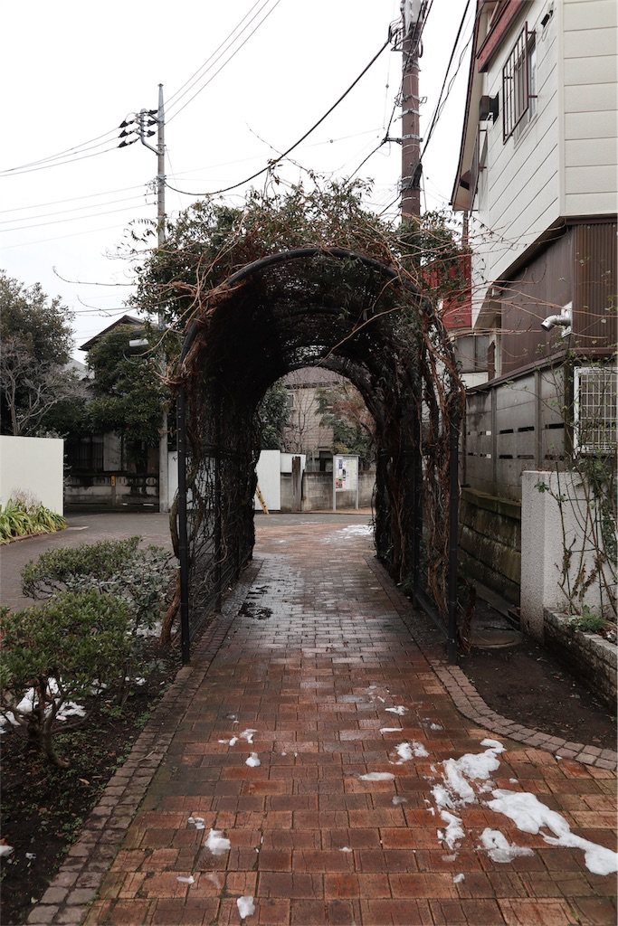 f:id:chizuchizuko:20180202212757j:plain