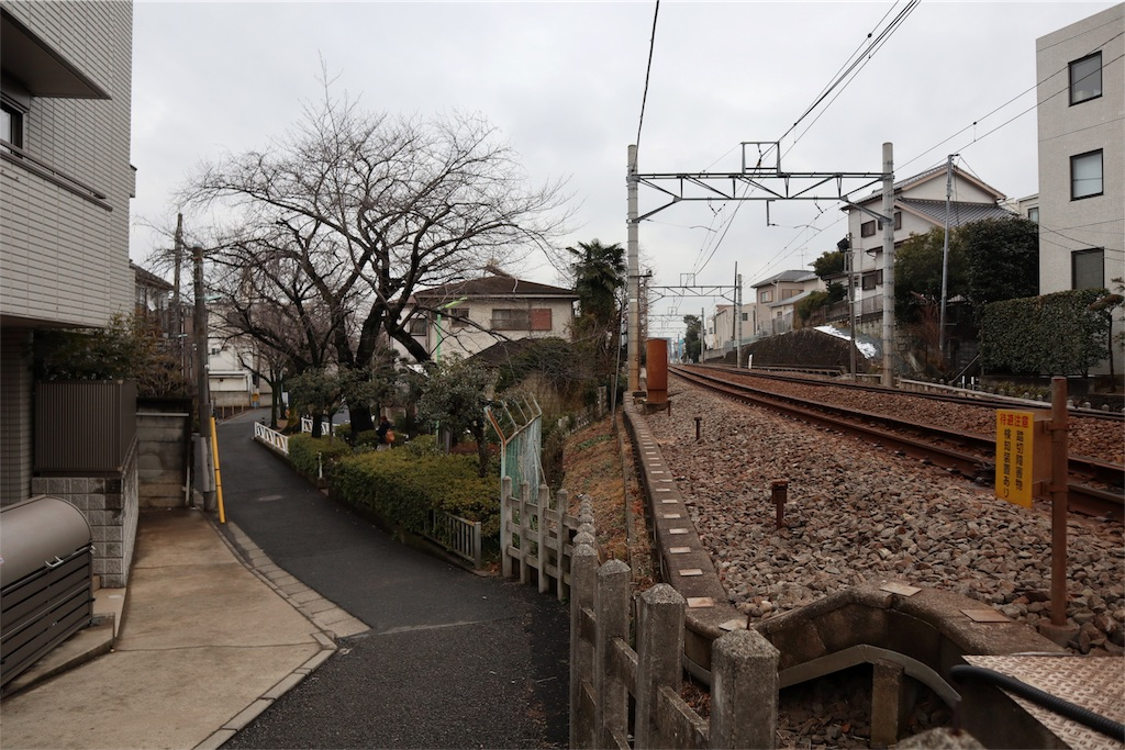 f:id:chizuchizuko:20180202213305j:plain