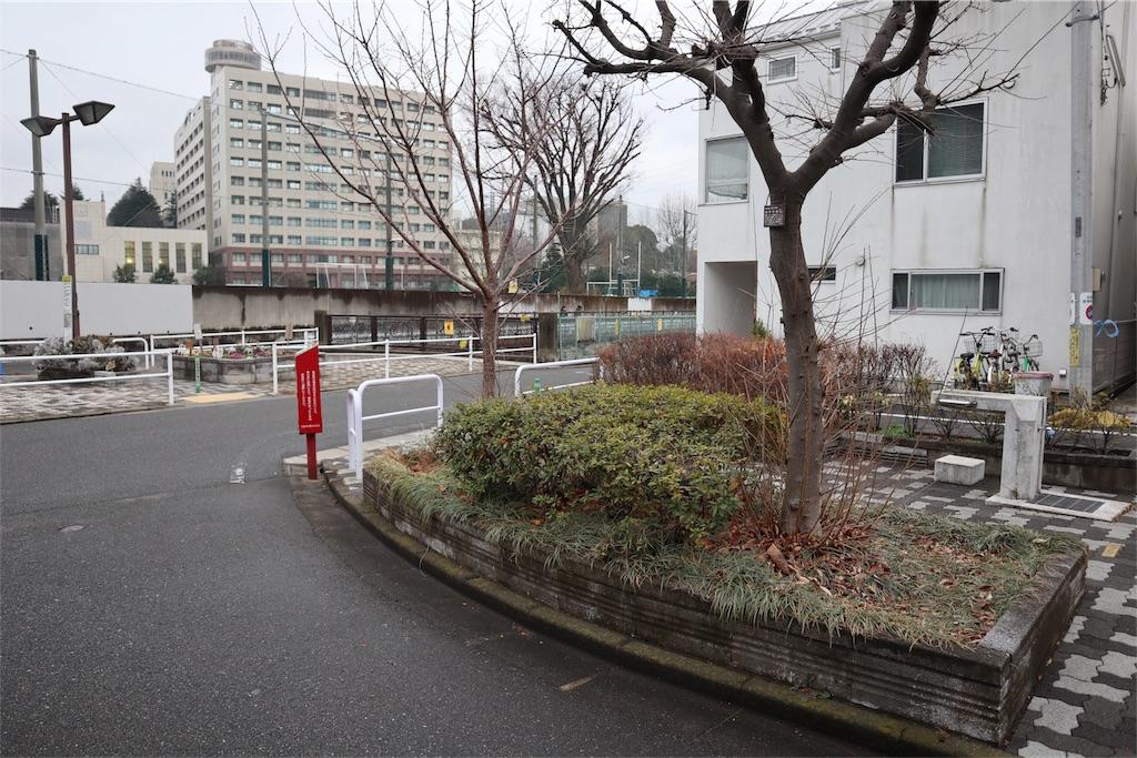 f:id:chizuchizuko:20180202213424j:plain