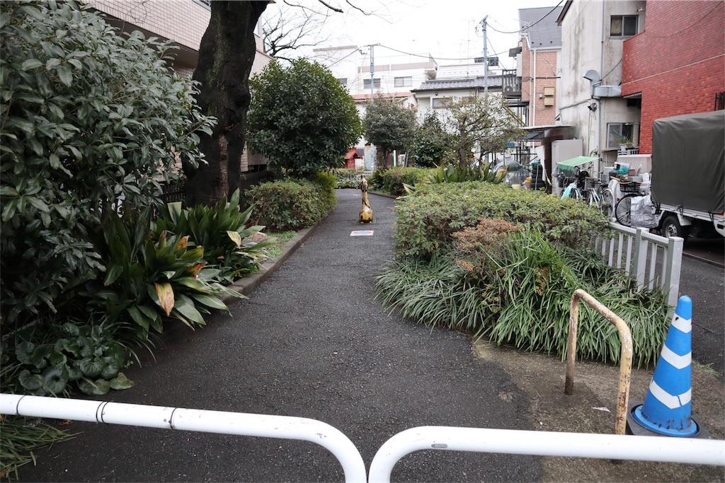 f:id:chizuchizuko:20180202213442j:plain