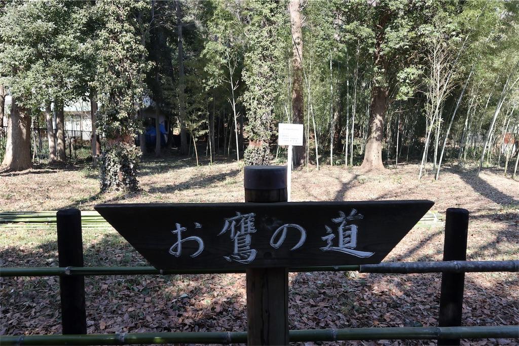 f:id:chizuchizuko:20180218211450j:image
