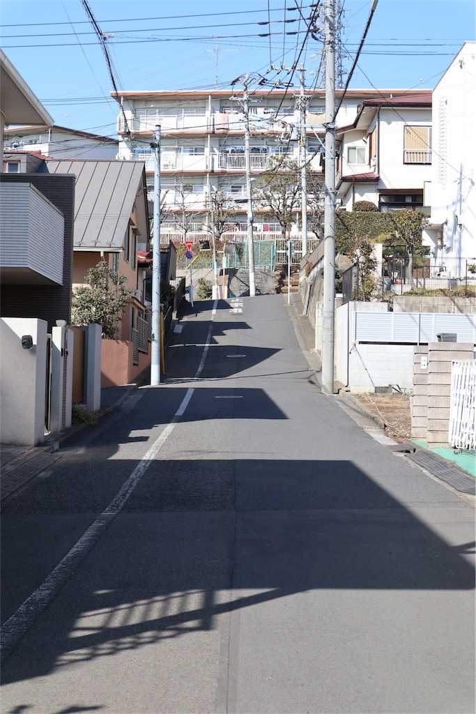 f:id:chizuchizuko:20180218211855j:image