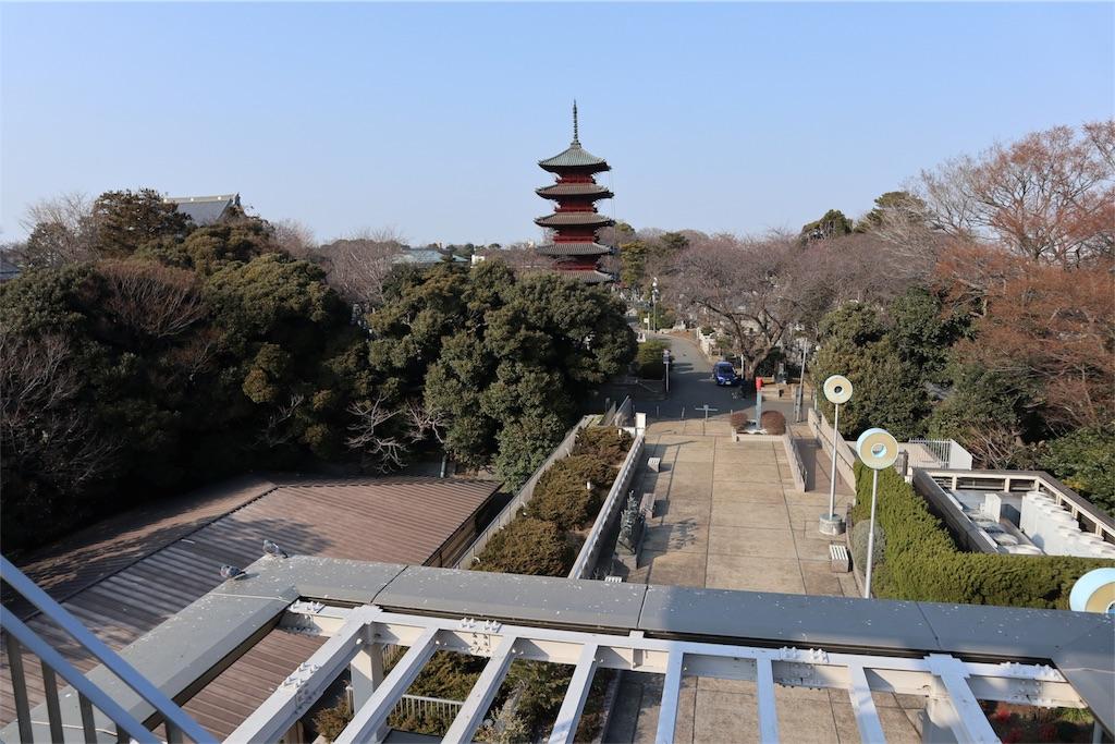 f:id:chizuchizuko:20180224200038j:image