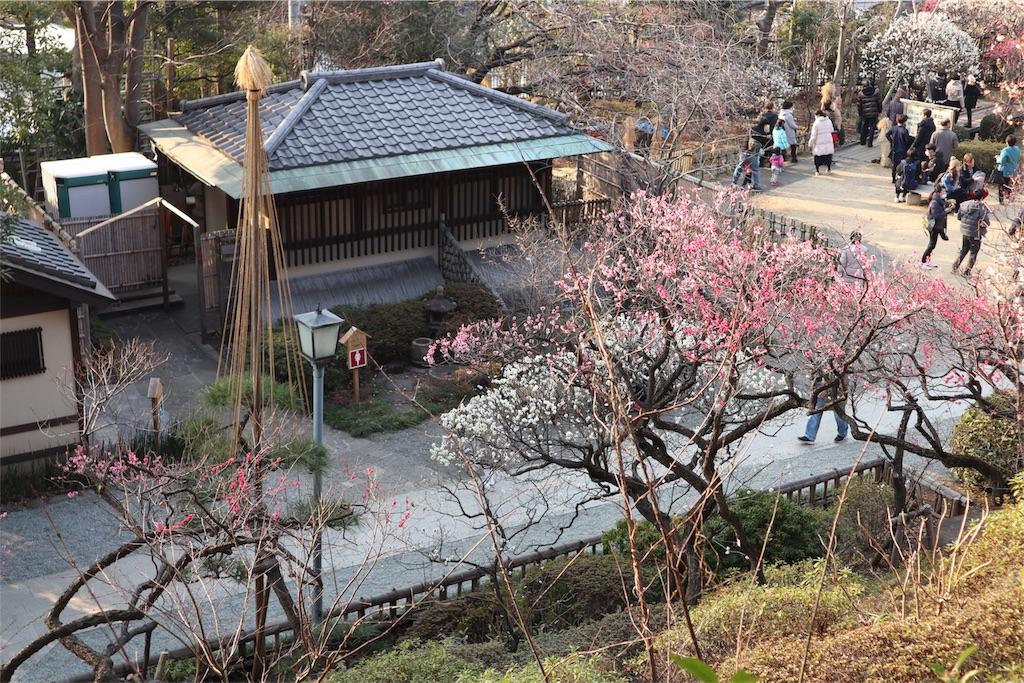 f:id:chizuchizuko:20180224200638j:image
