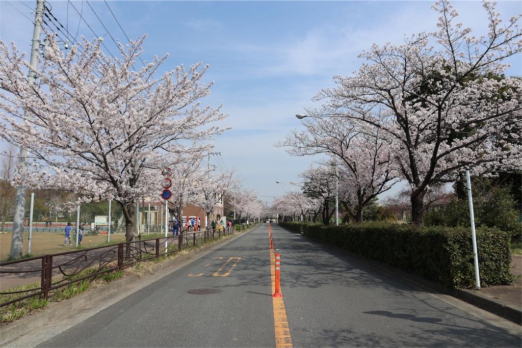 f:id:chizuchizuko:20180328225754j:image