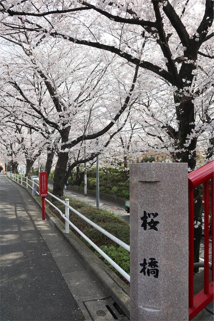 f:id:chizuchizuko:20180328230300j:image
