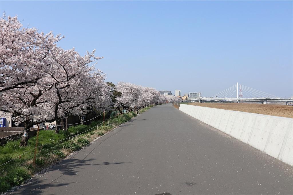 f:id:chizuchizuko:20180329115113j:image
