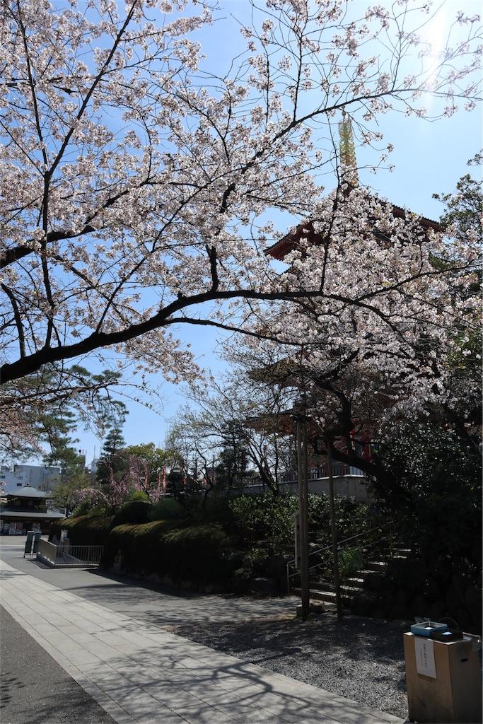 f:id:chizuchizuko:20180330125015j:image