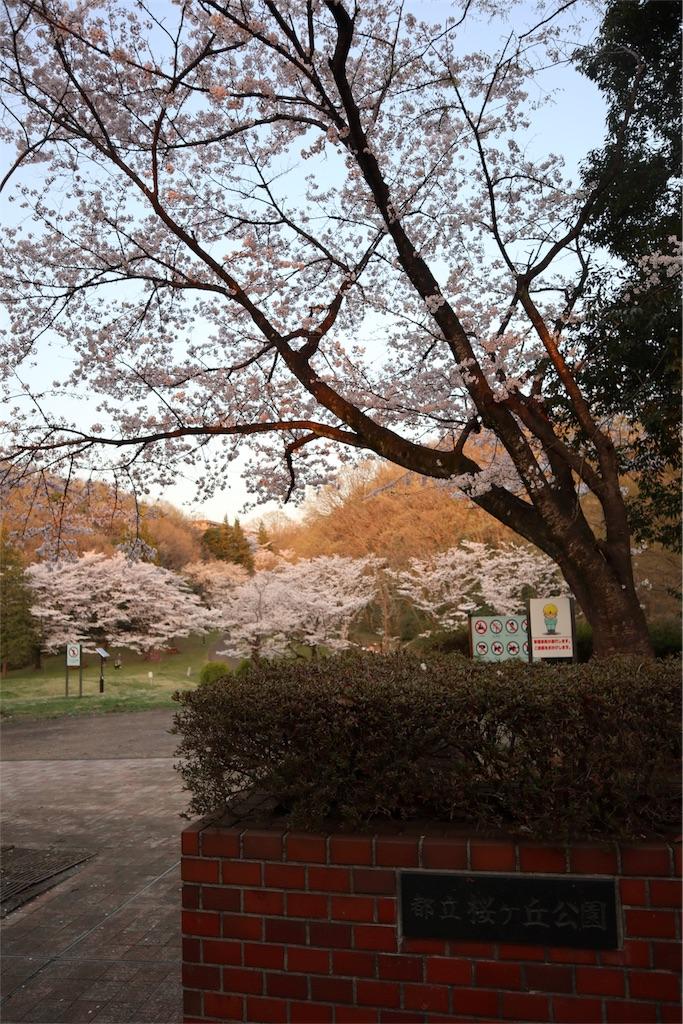 f:id:chizuchizuko:20180330181338j:image