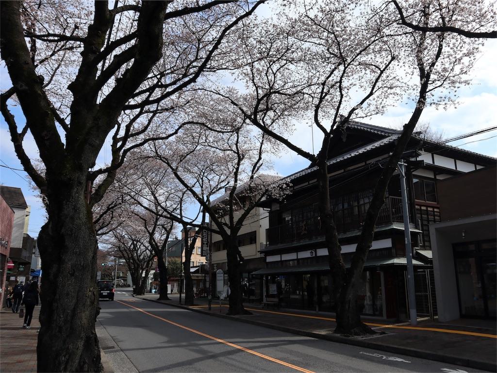 f:id:chizuchizuko:20180402103323j:image
