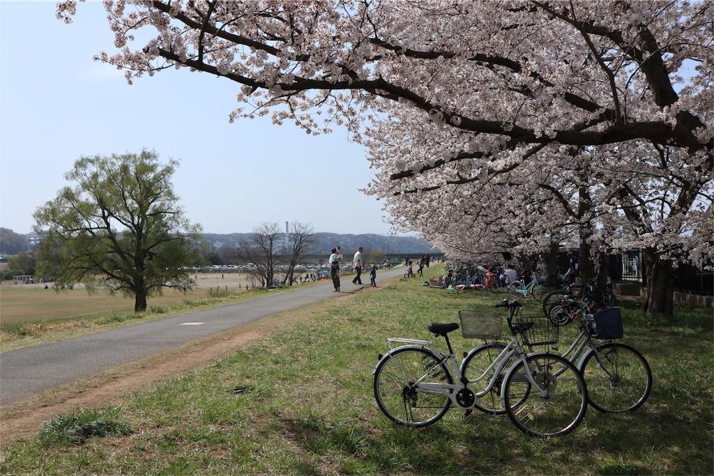 f:id:chizuchizuko:20180402103859j:image