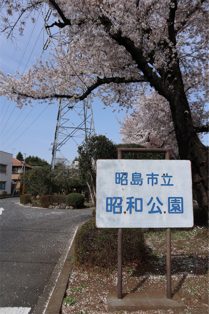 f:id:chizuchizuko:20180402103944j:image