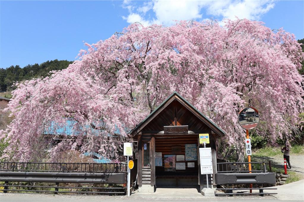 f:id:chizuchizuko:20180410135239j:image