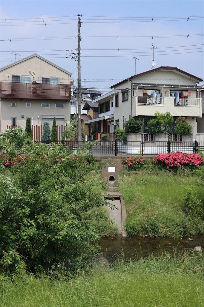 f:id:chizuchizuko:20180518210313j:image