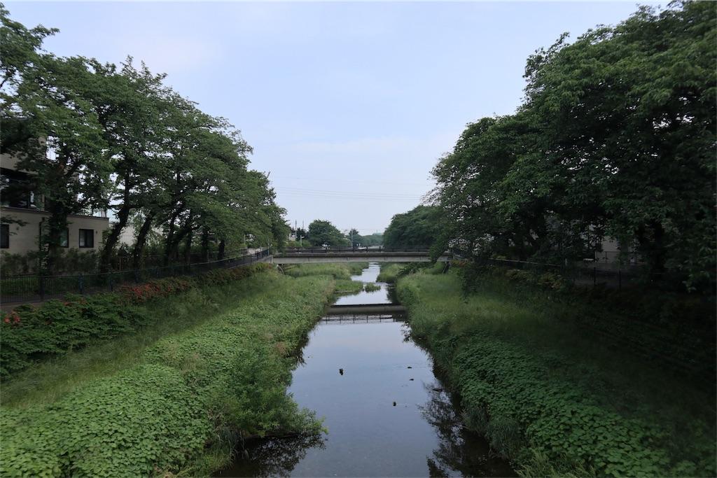 f:id:chizuchizuko:20180518210439j:image