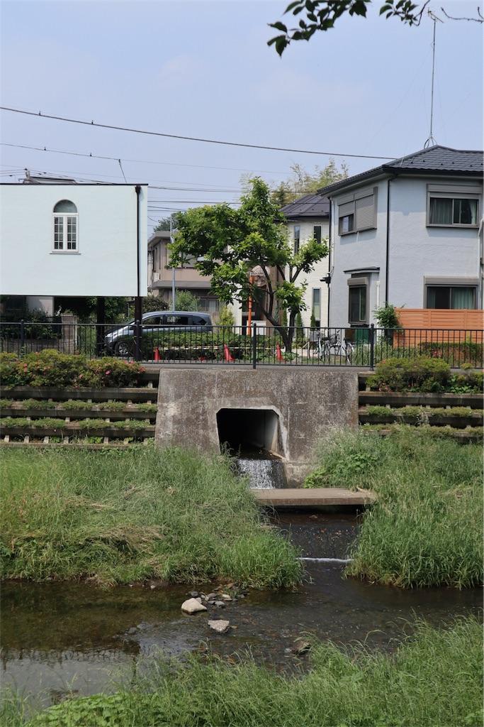 f:id:chizuchizuko:20180518210527j:image
