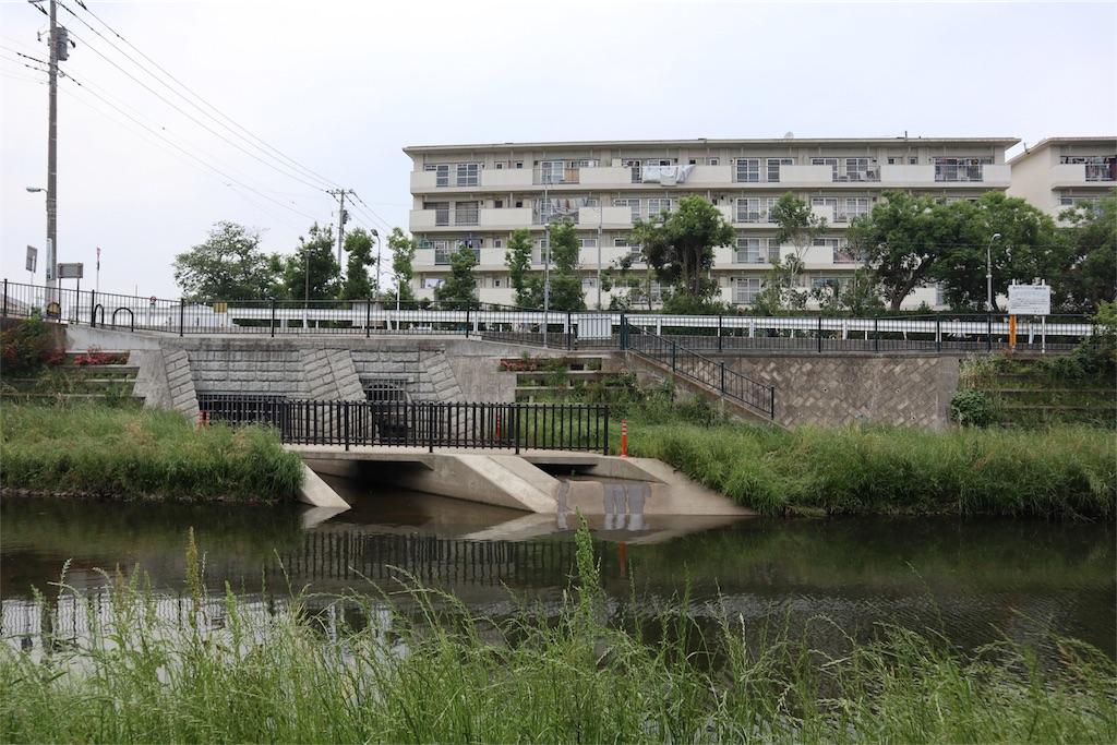 f:id:chizuchizuko:20180518213246j:image