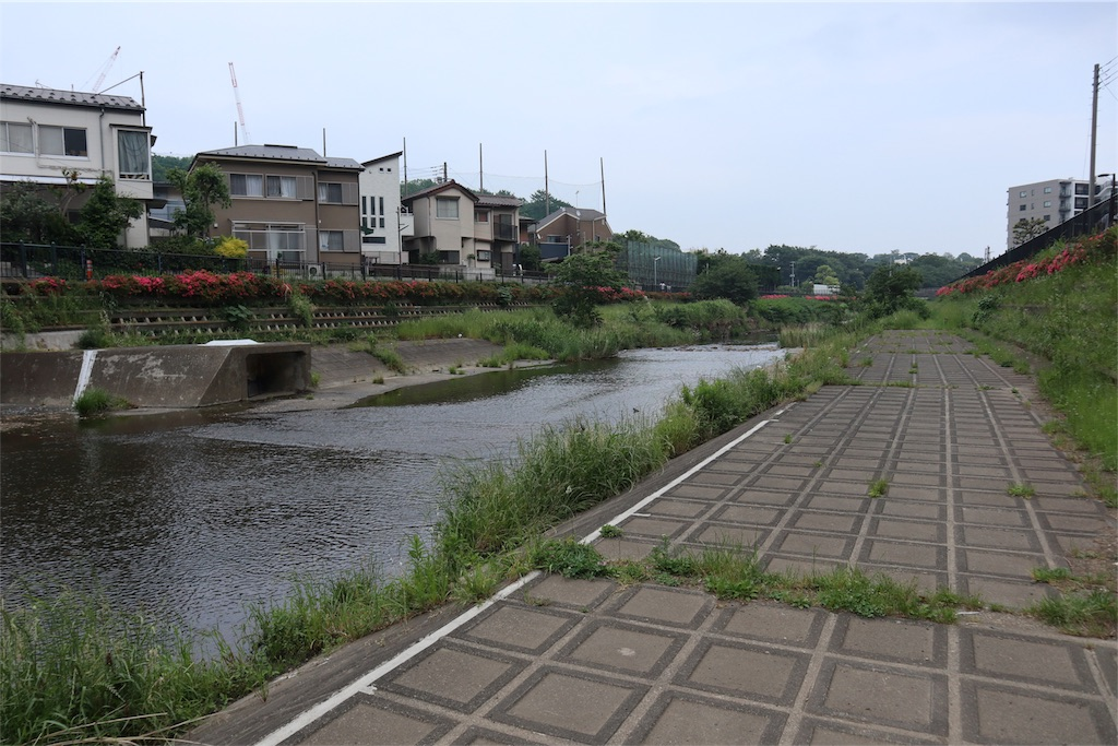 f:id:chizuchizuko:20180518213525j:image