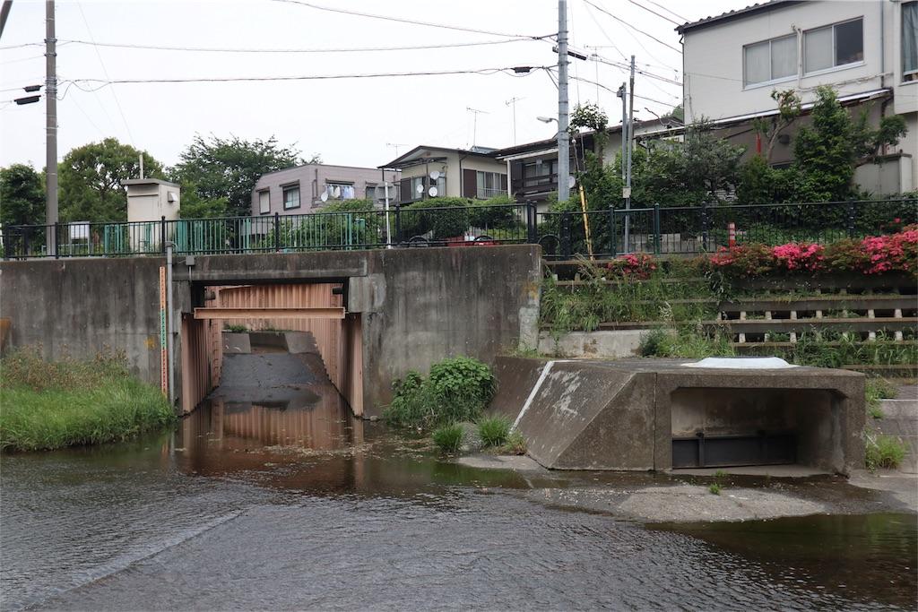 f:id:chizuchizuko:20180518213550j:image