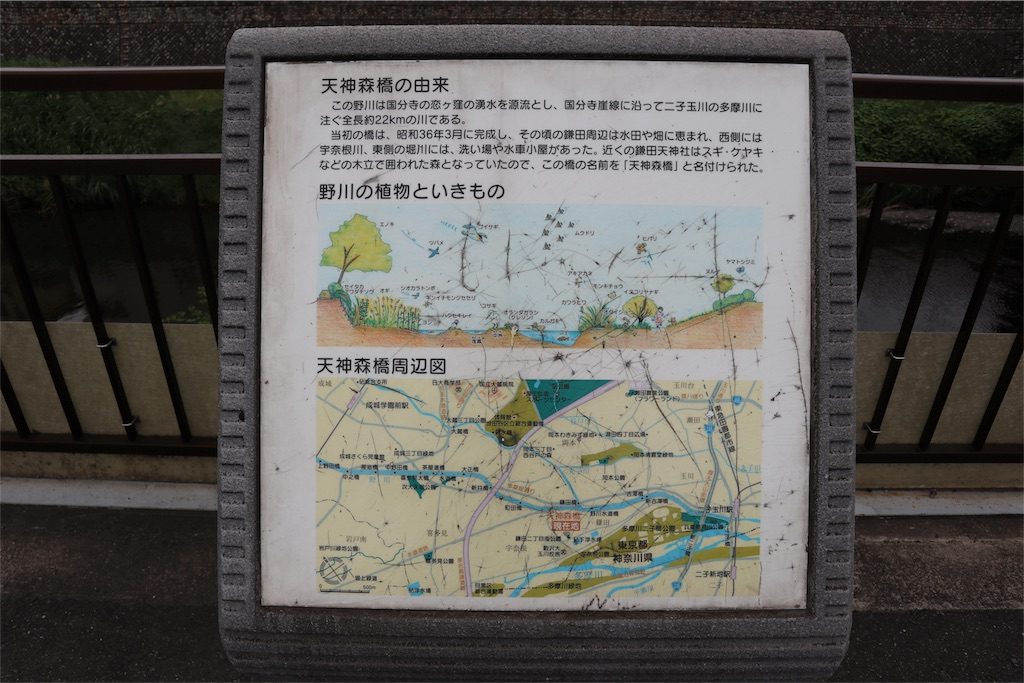 f:id:chizuchizuko:20180518214521j:image