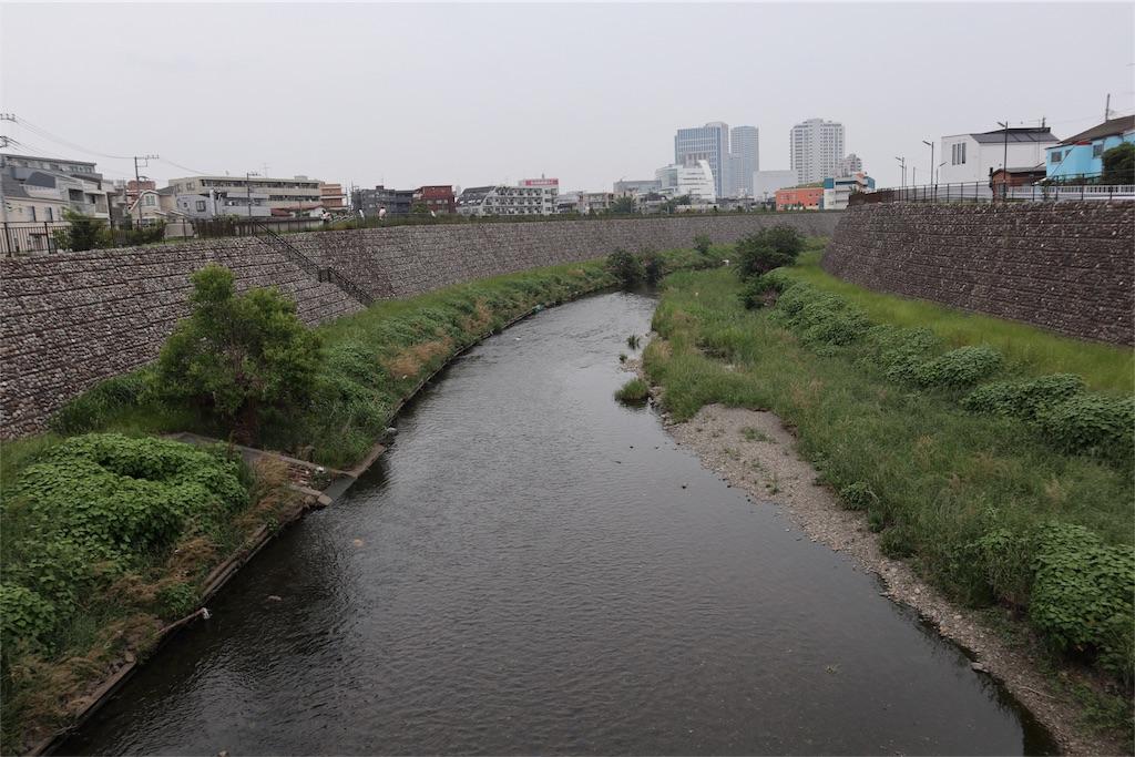 f:id:chizuchizuko:20180518214749j:image