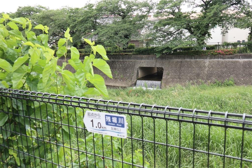 f:id:chizuchizuko:20180522134343j:image