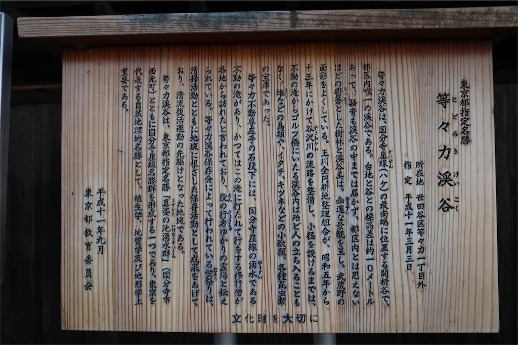 f:id:chizuchizuko:20180528103338j:image