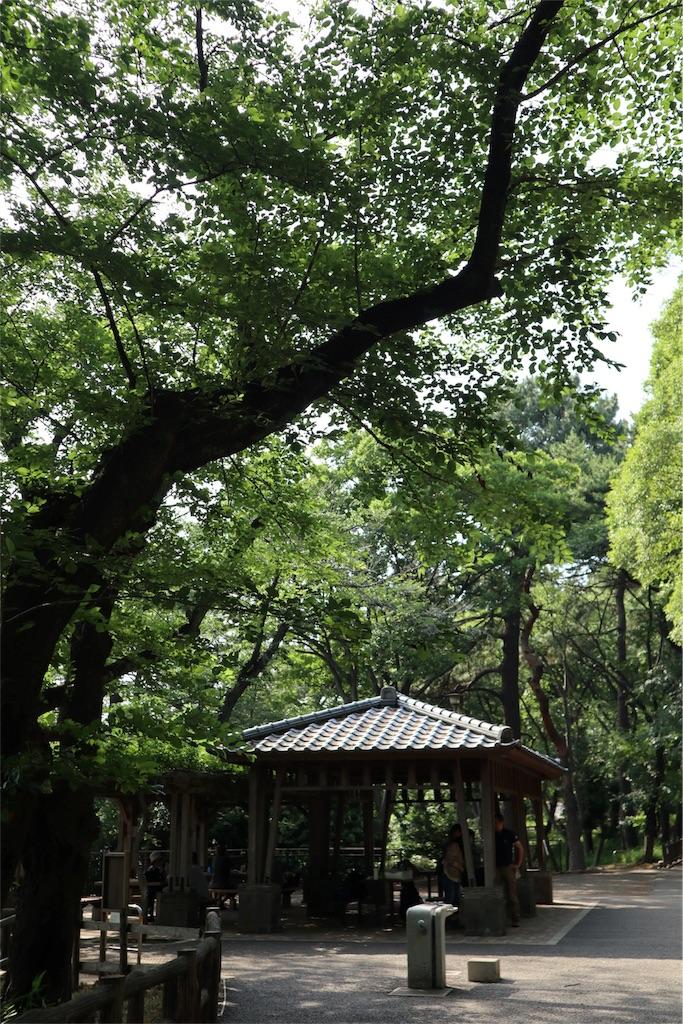 f:id:chizuchizuko:20180528103357j:image