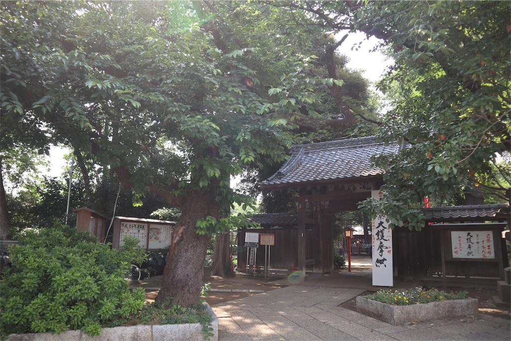 f:id:chizuchizuko:20180528103411j:image