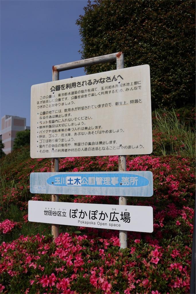 f:id:chizuchizuko:20180528103449j:image