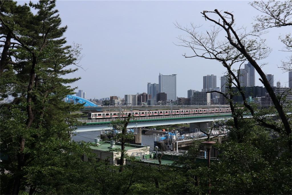 f:id:chizuchizuko:20180528103523j:image