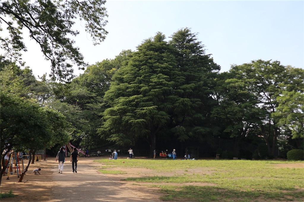 f:id:chizuchizuko:20180528103559j:image