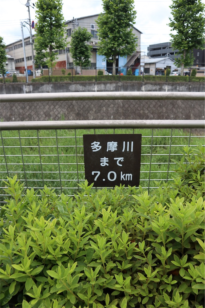 f:id:chizuchizuko:20180620105452j:image