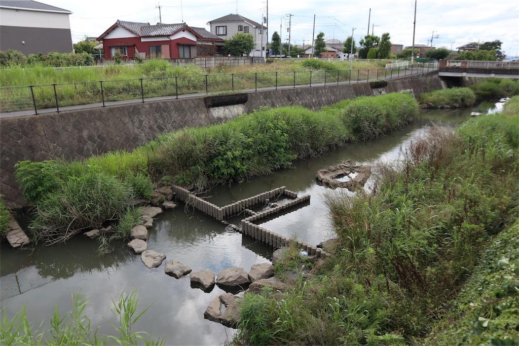 f:id:chizuchizuko:20180620105606j:image