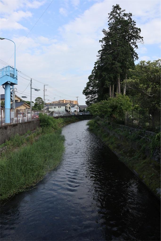 f:id:chizuchizuko:20180620111309j:image