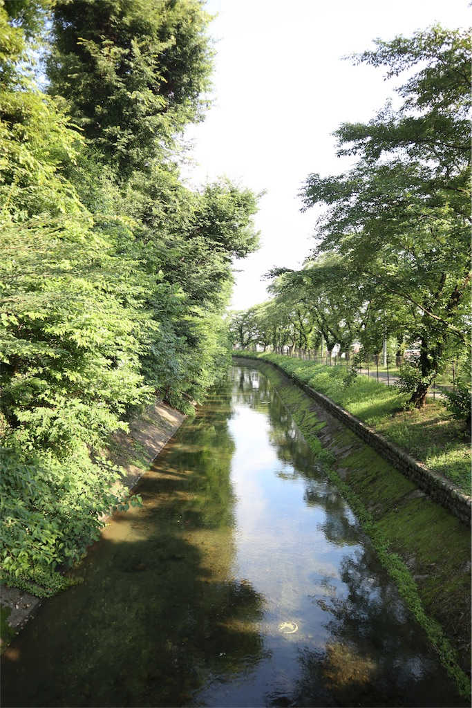 f:id:chizuchizuko:20180620111411j:image
