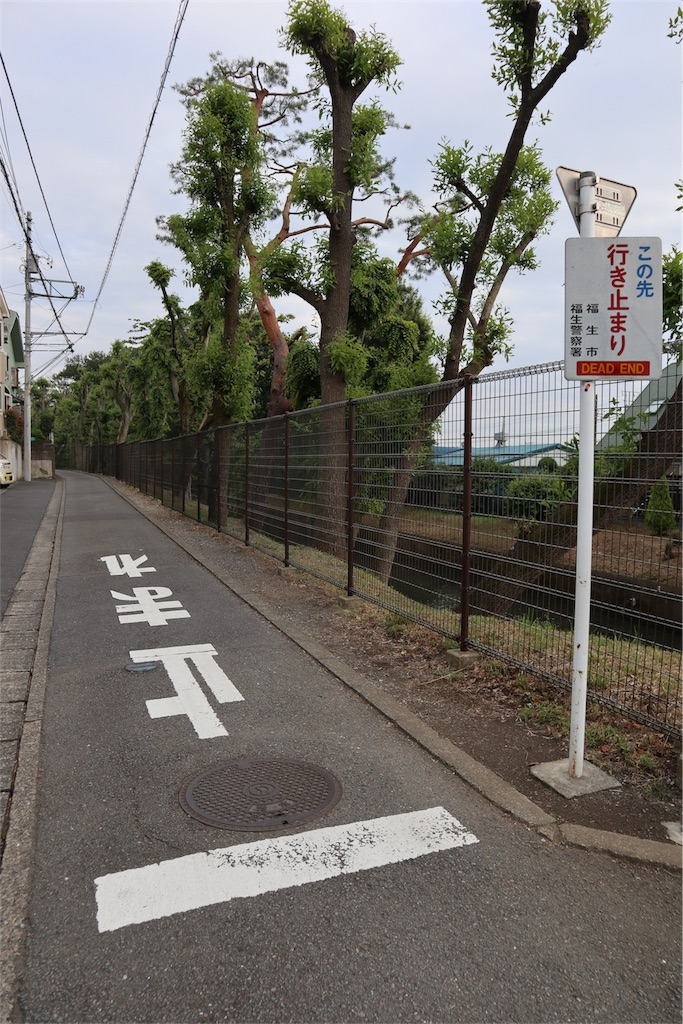 f:id:chizuchizuko:20180620111748j:image