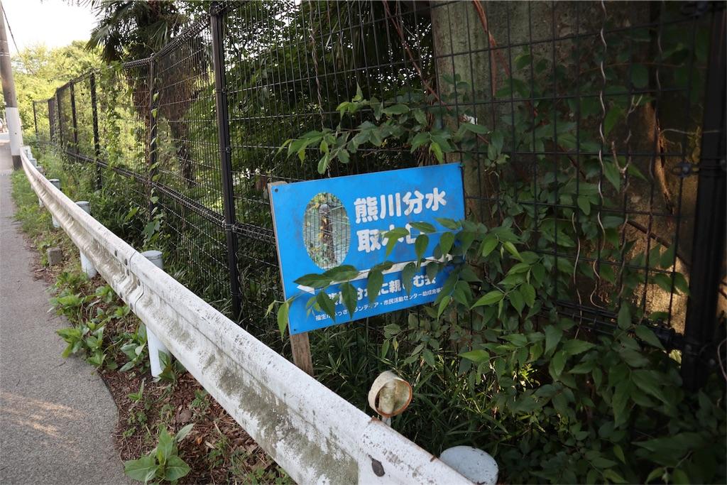 f:id:chizuchizuko:20180620111754j:image