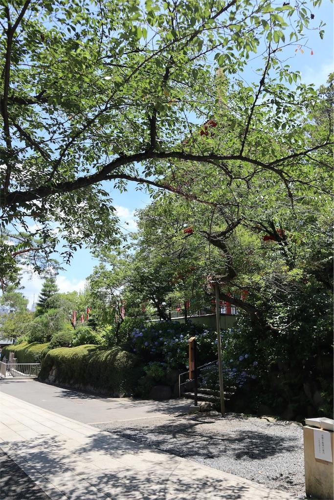 f:id:chizuchizuko:20180620113559j:image