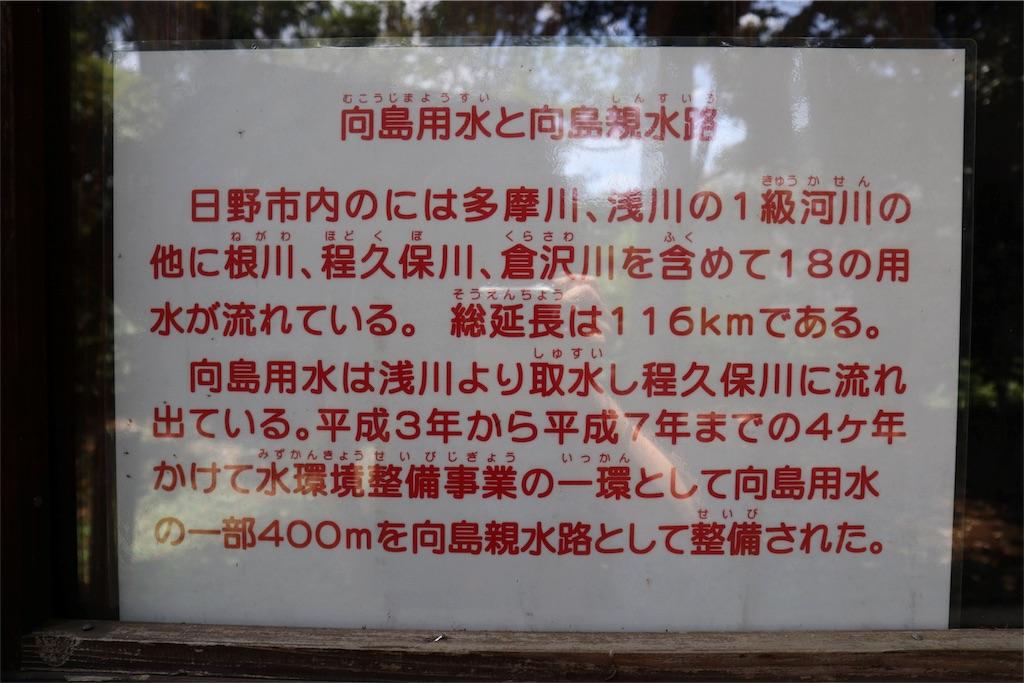 f:id:chizuchizuko:20180620113623j:image