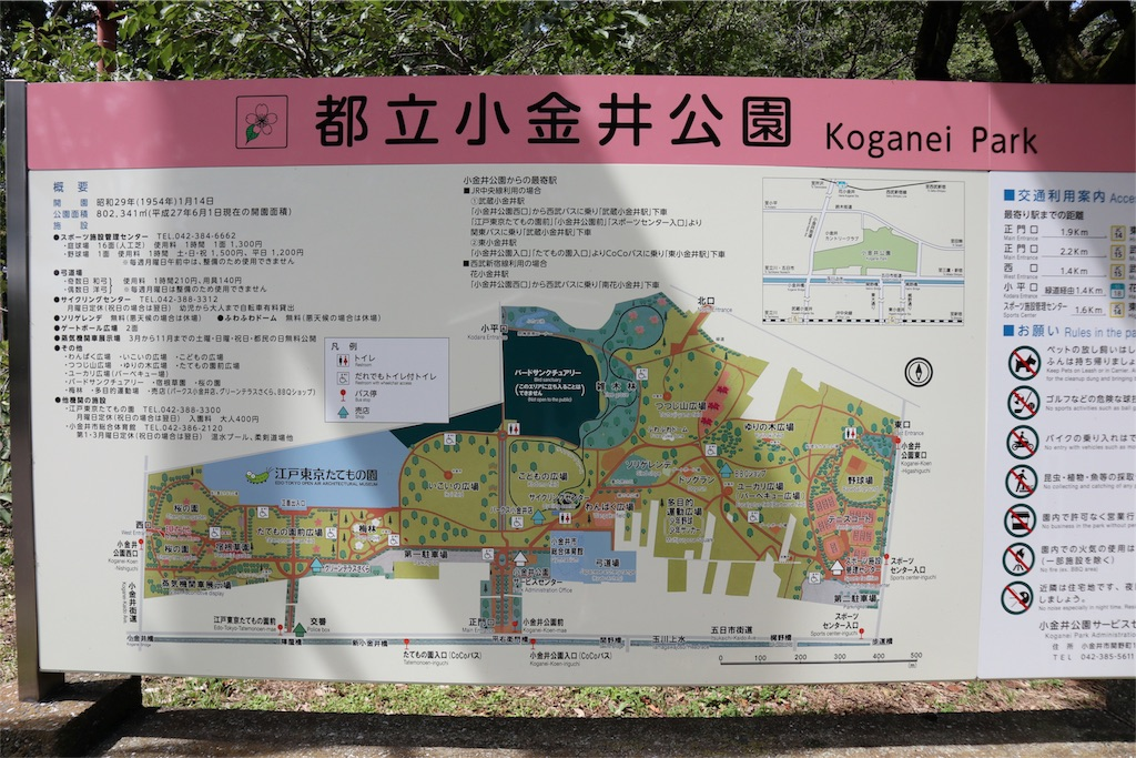 f:id:chizuchizuko:20180708101259j:image