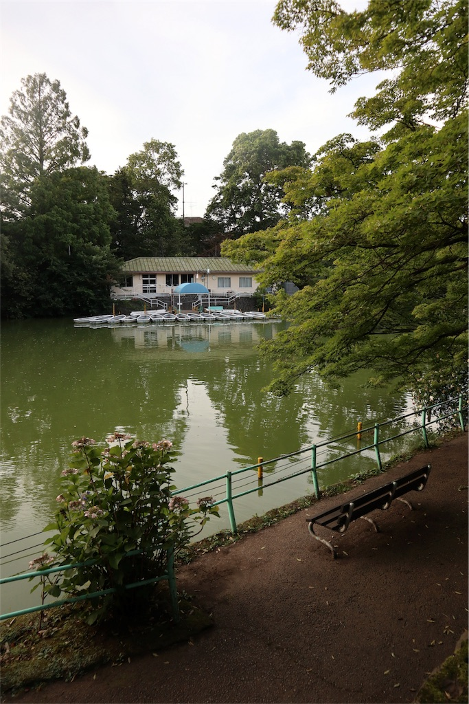 f:id:chizuchizuko:20180708103800j:image