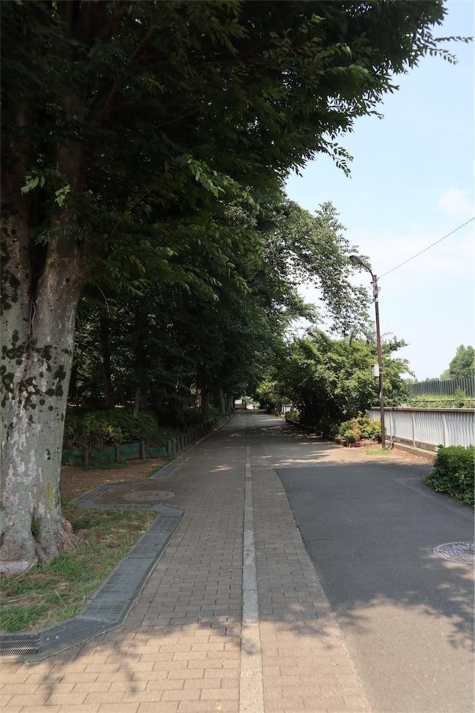 f:id:chizuchizuko:20180809173654j:image