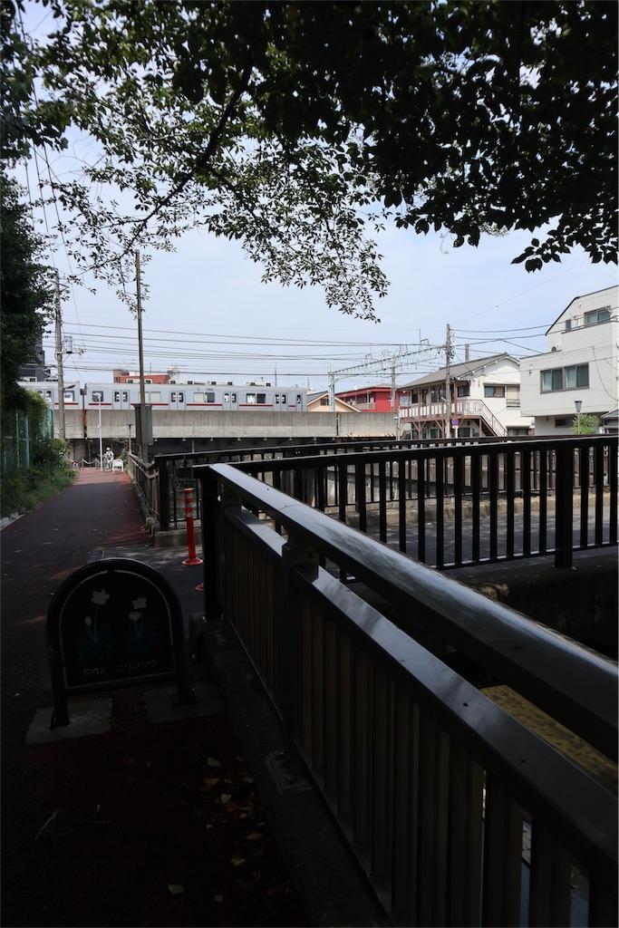 f:id:chizuchizuko:20180809173957j:image