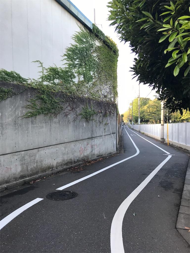 f:id:chizuchizuko:20180903200854j:image