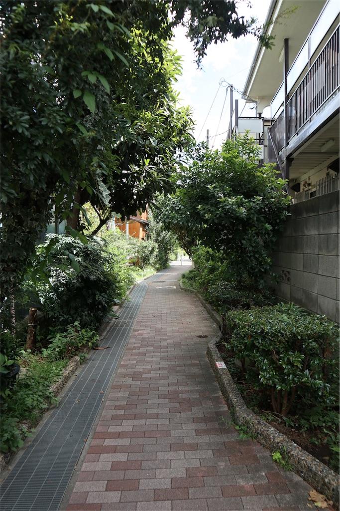 f:id:chizuchizuko:20180909092953j:image