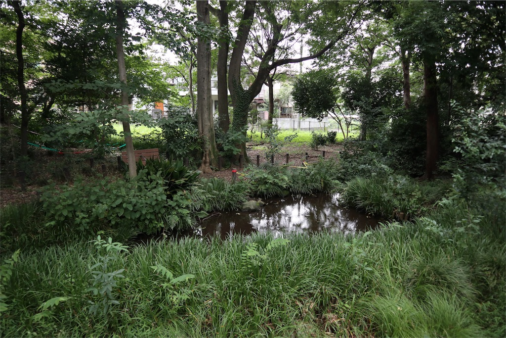 f:id:chizuchizuko:20180909093459j:image