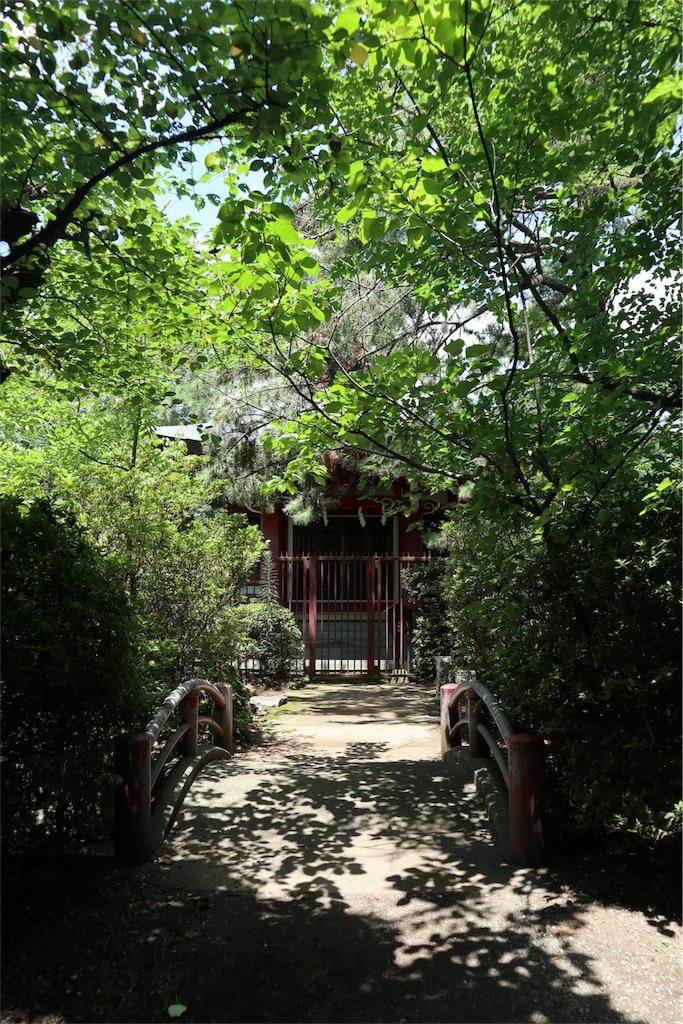 f:id:chizuchizuko:20180911202901j:image